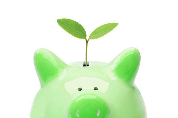 A piggy bank with a green tree / Green saving concept / Economic growth with environmental concern