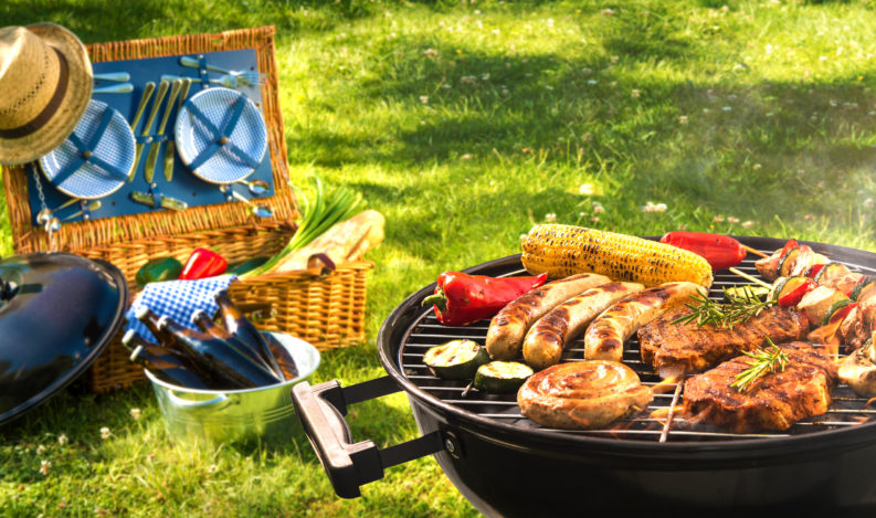 Barbecue picnic on a meadow